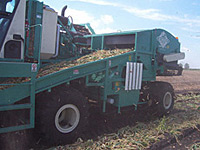 Low Maintenance Mechanical Harvester